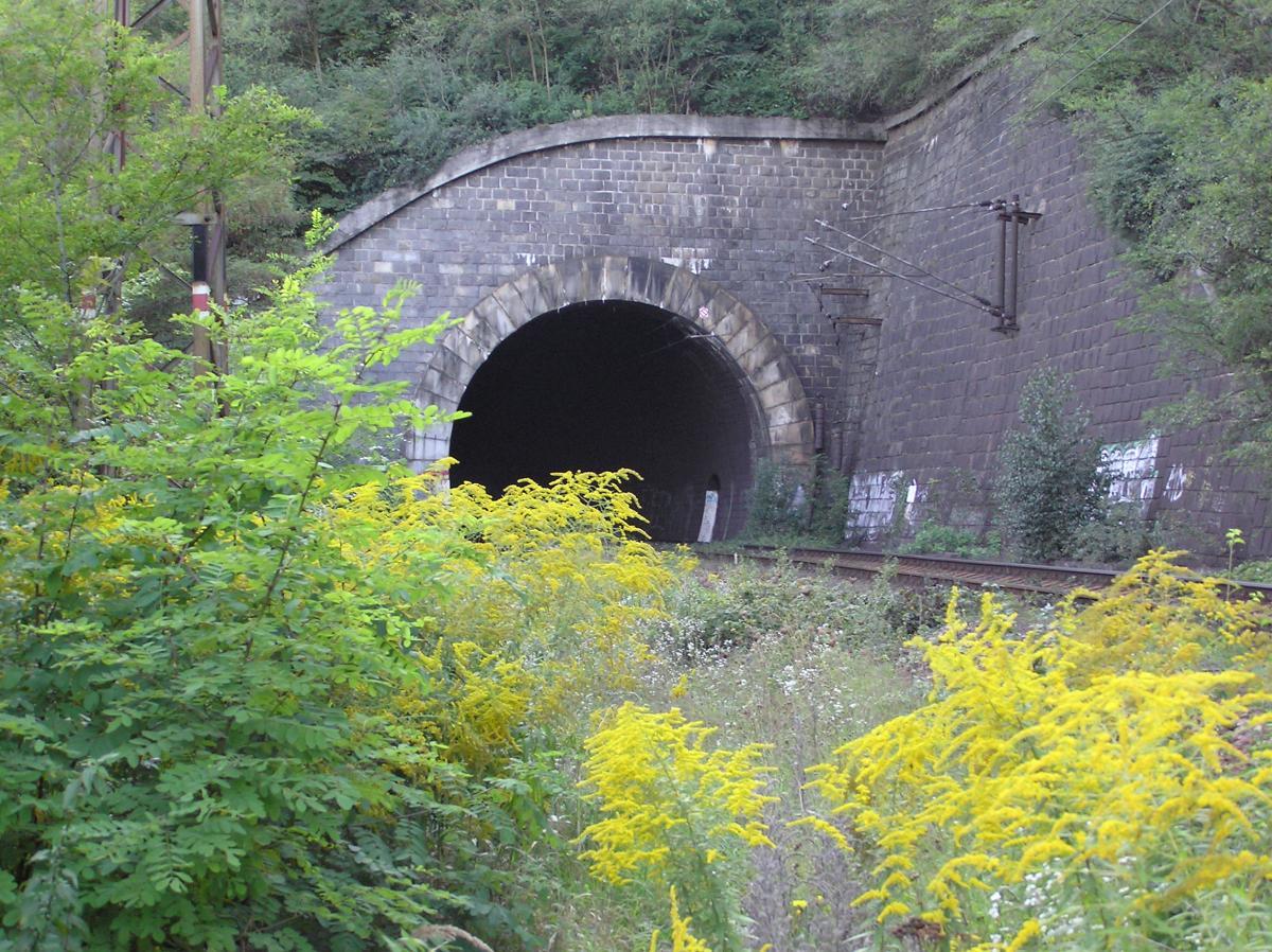 Železniční most Braník - foto 53